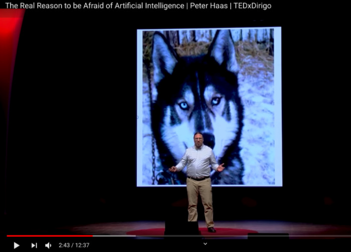 Image of TED talk about how AI is different from human intelligence